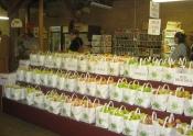 Oak Glen CountryStore