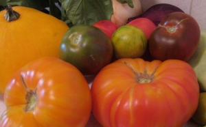 Summer's Bounty: Basil, heirloom tomatoes, and squash